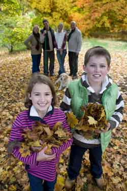 kids playing in leaves. Special precaution should be taken with Anittussives and kids.